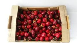fruitletbox-bio-kirschen