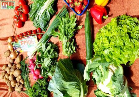 Fruitletbox Regional Junior Inhalte zum Wochenende (09./10.06.)