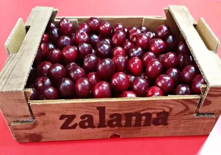 Fruitletbox PICOTA®Kirschen