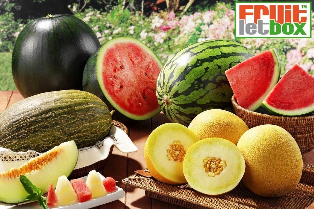 fruitletbox-melonen