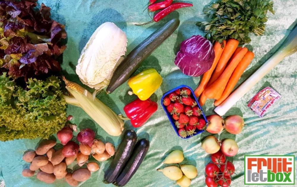 Fruitletbox Regional Junior (18.08-19.08)