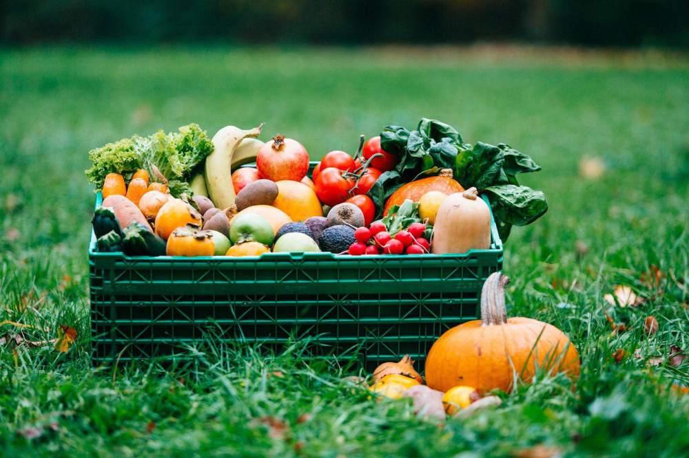 Fruitletbox Gemüsekiste